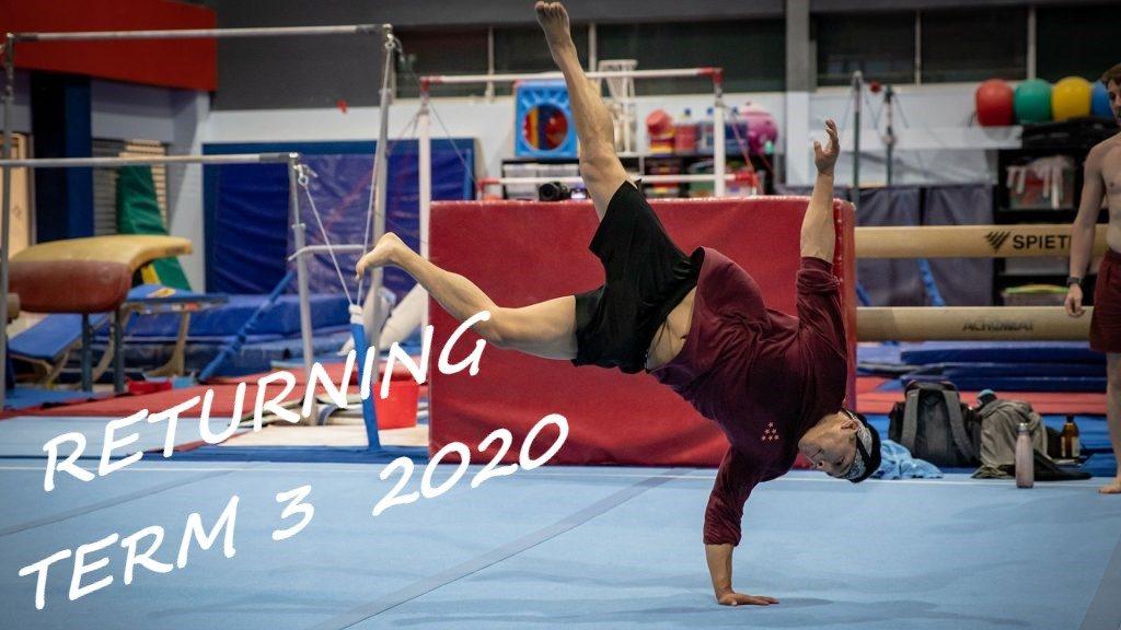Adults Gymnastics